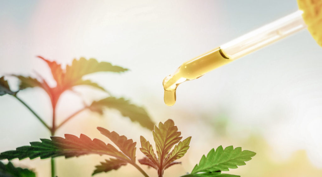 Does CBD Oil Go Bad?