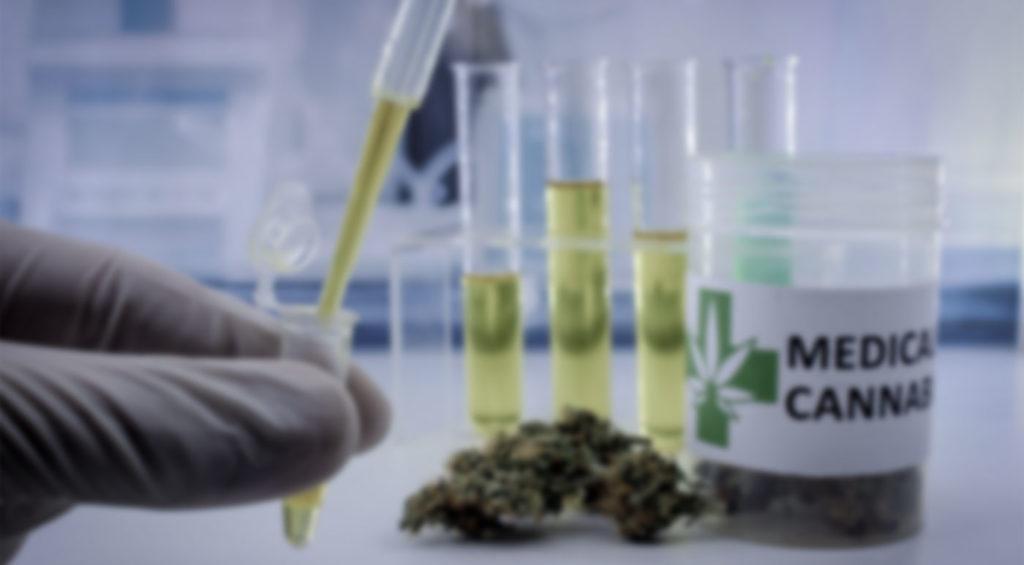 CBD BioCare Company Review - Best CBD Oils