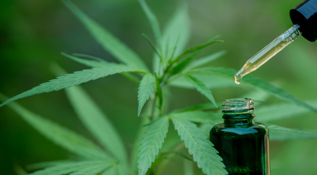 Why Is CBD Put Into Oil?