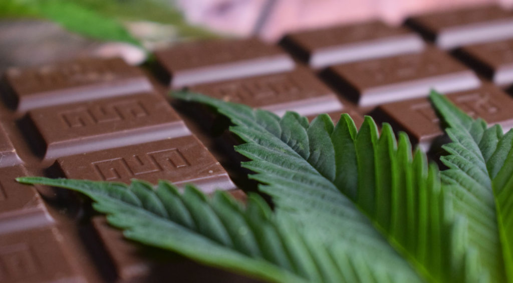 Best CBD Chocolates